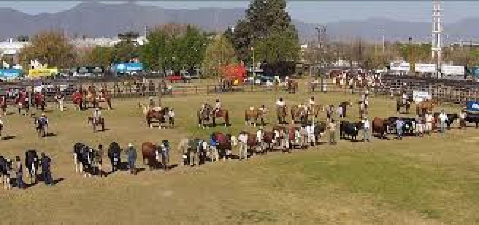 El lunes se lanza la Expo Rural